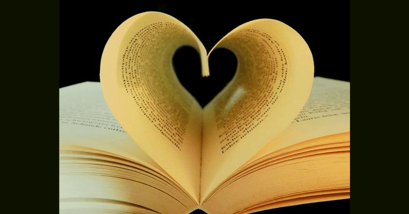 Chapter 892 – 893 of My Love Enlighten Me Novel