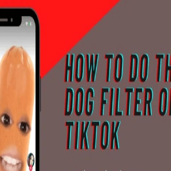 """Am I A Pee Pee"" Hot Dog Filter Is Trending On TikTok"