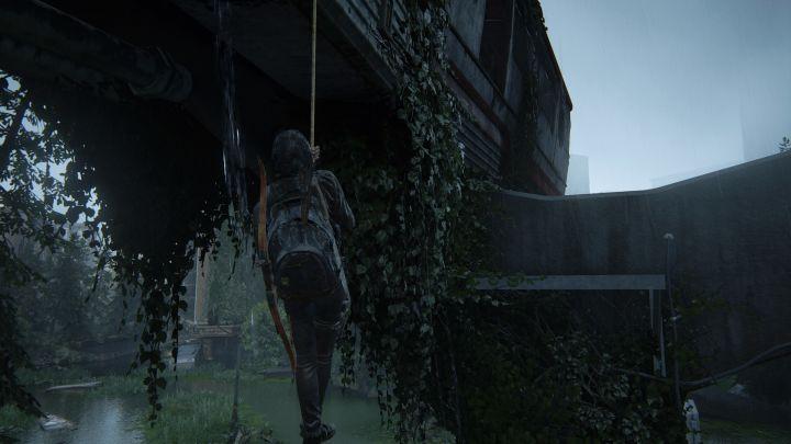The Last of Us™ Part II_20200613010721