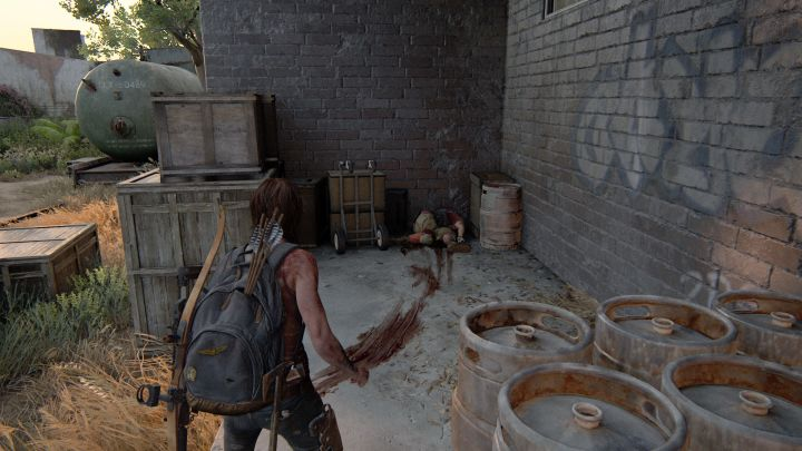 The Last of Us™ Part II_20200621173416