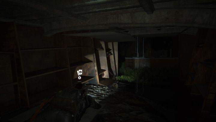 The Last of Us™ Part II_20200612181508