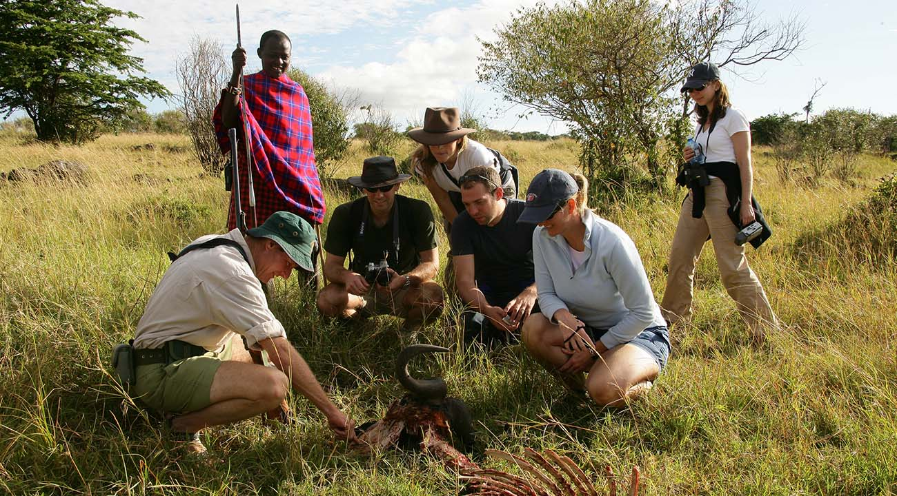 African Group Safari Experiences