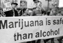 Marijuana, Drugs, drug crimes