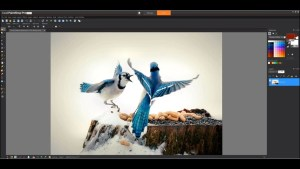 Corel PaintShop Pro 2020 Crack Ultimate 22.2.0.8 & Serial Number