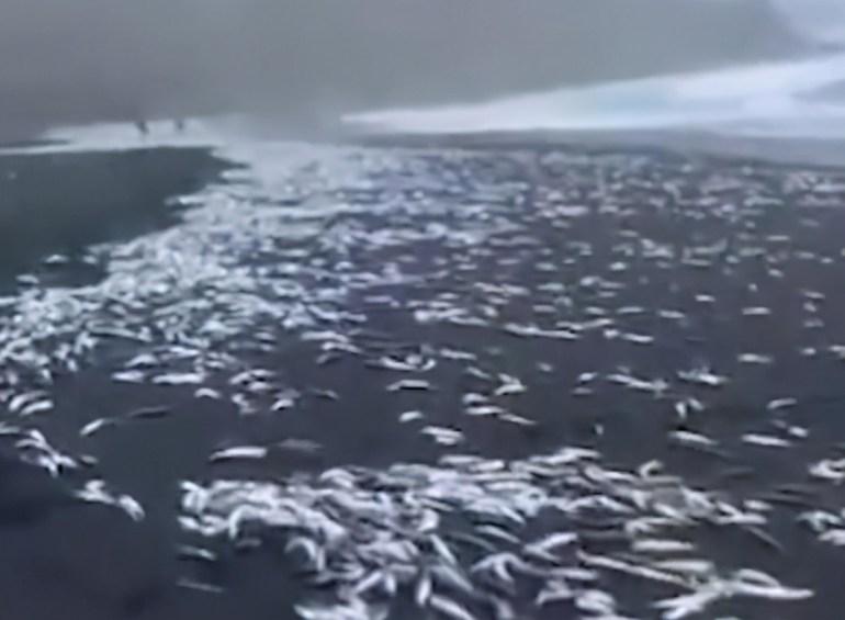 台海一旦发生意外,解放军需要把兵力投射到台湾以东海域吗?