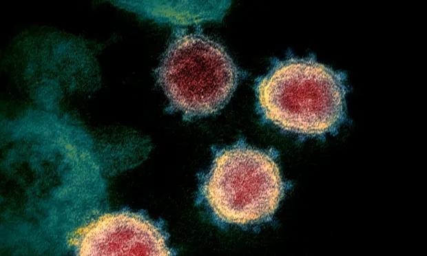 墨尔本华人区纯中文广告牌陷争议!有些人很不爽:这是英语国家