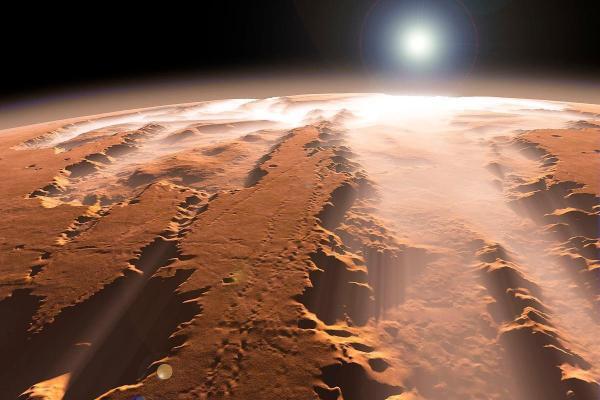 报应来了,因散布美国大选阴谋论,福克斯将面临数10亿美元索赔