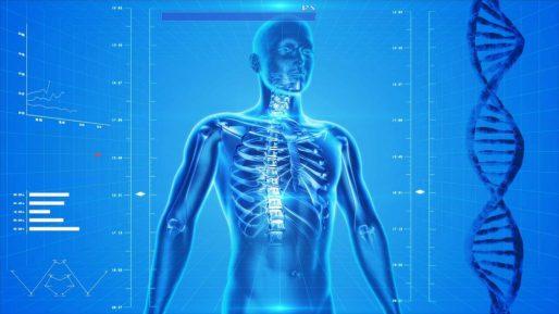 X-ray Beam