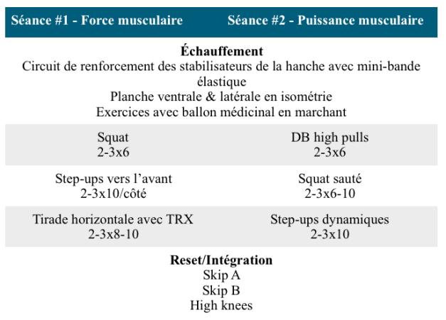 Exemple de séances en musculation