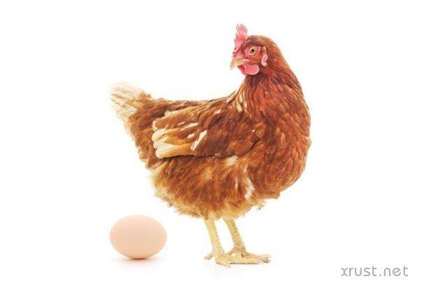 Изобретены лечебные яйца