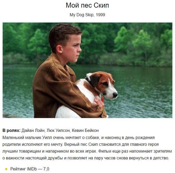 Мой пес Скип