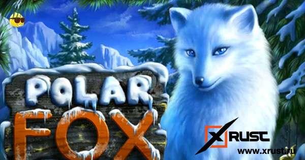 Русский Вулкан и новый слот Polar Fox