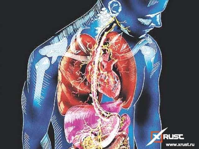 Таблетки, разработанные британцами, помогут похудеть