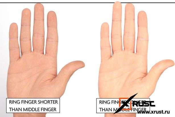 На что указывает безымянный палец у мужчин