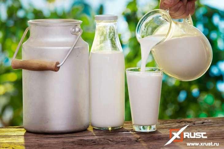Цельное молоко в борьбе с ожирением