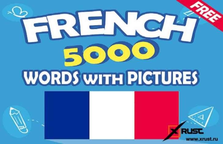 Французский, когда бушует коронавирус – изучай на Android