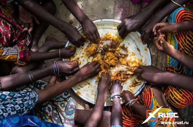 Коронавирус: миру грозит голод