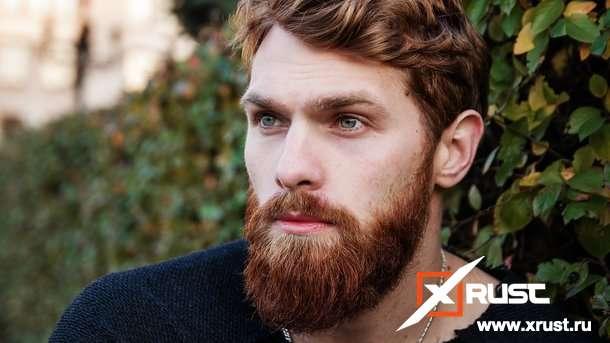 Мужские бороды по типам лица