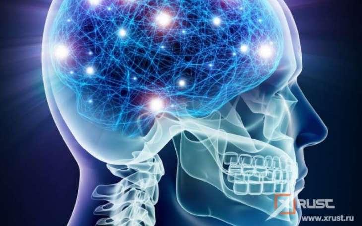 Мозги изнашиваются – первые звоночки видит ИИ