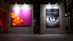 xstone photography event exhibition