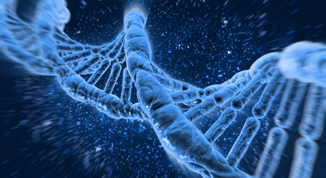CRISPR Gene Editing Technique Gets Precision Upgrade