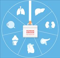 HumanOrganForTransplant_200