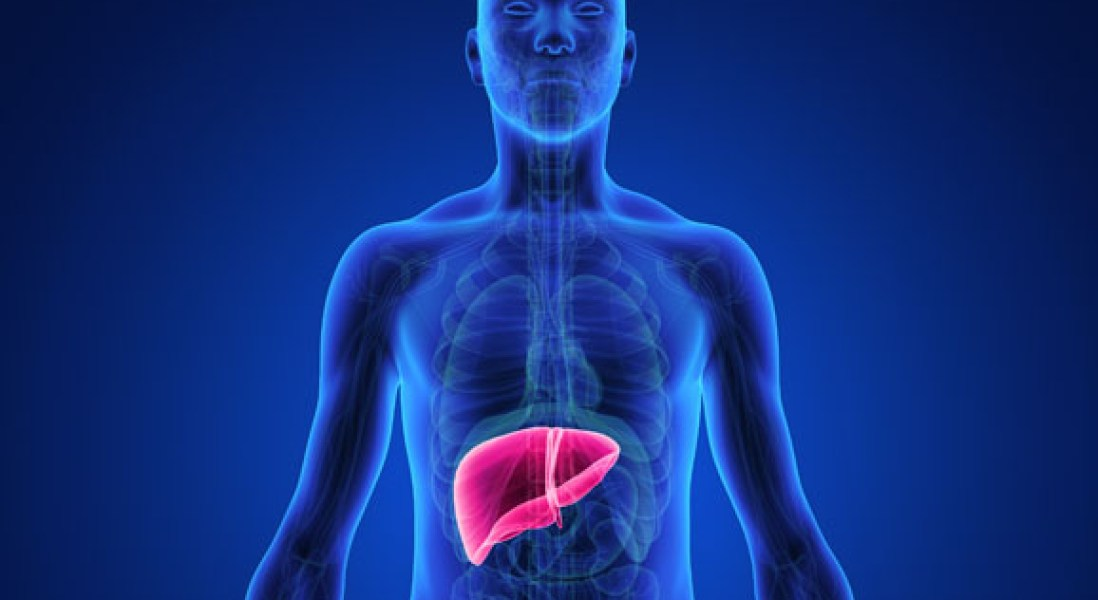 Using Viral Therapy To Reverse Liver Disease