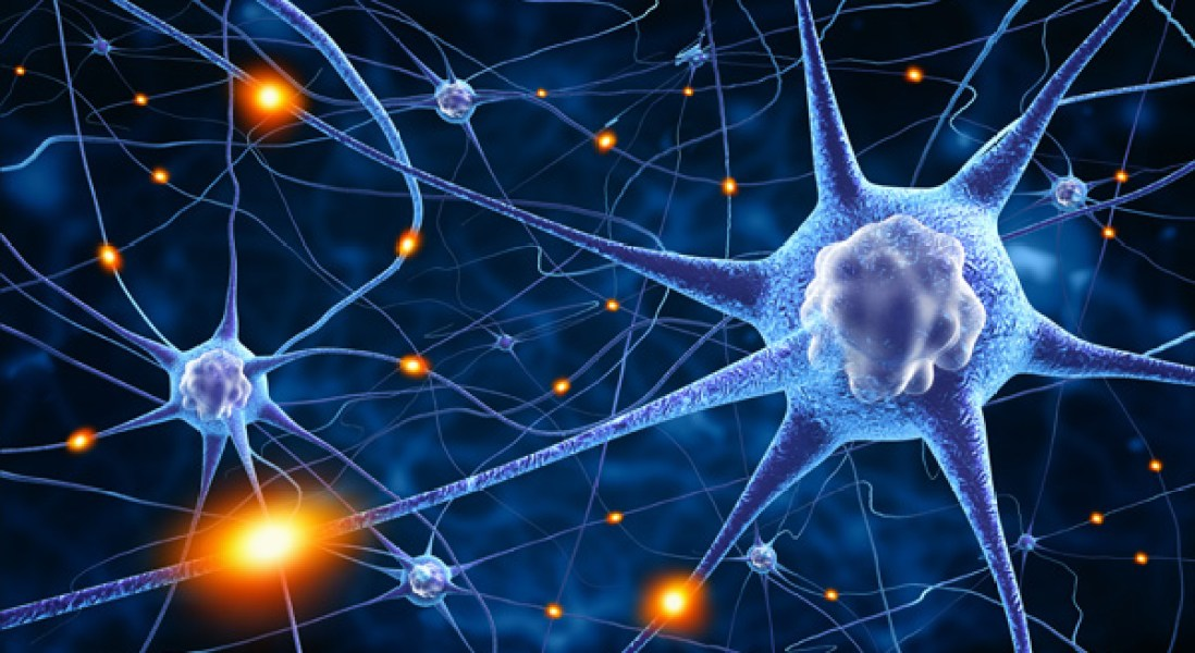 Nerve Damage Caused By MS Could Be Repaired By Vitamin D