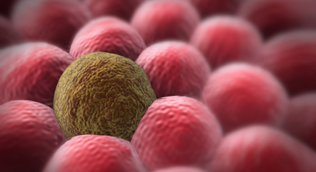 Reprogramming Cancer Cells to Restrict Tumor Growth