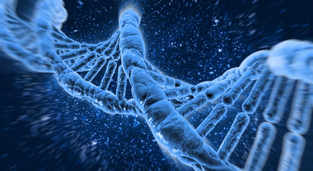 New CRISPR Gene Editing Enzyme Removed Duchenne Muscular Dystrophy Mutations