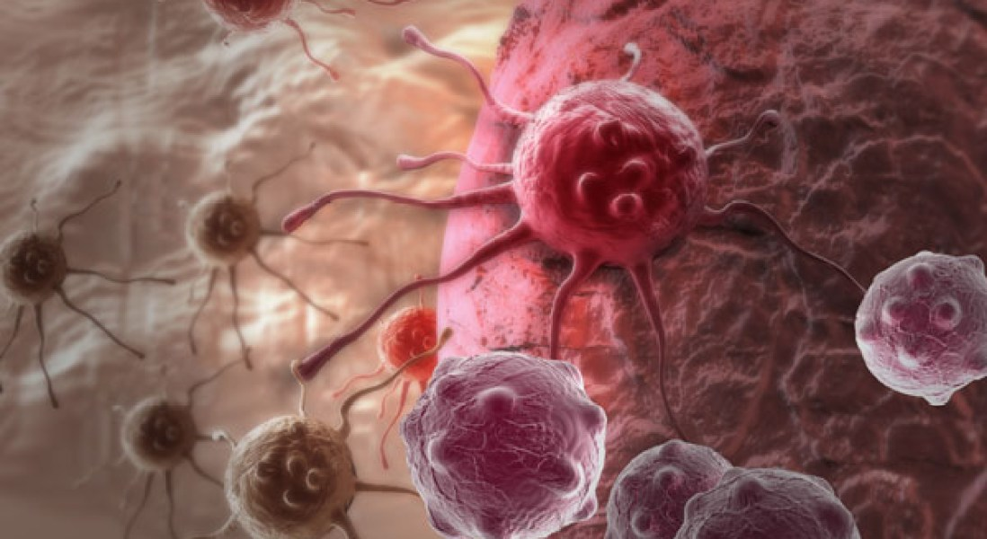 Protocells Help Chemotherapy Drugs Penetrate Solid Tumors