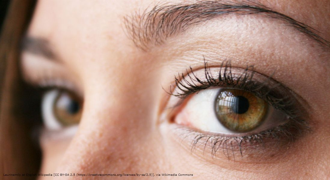Luxturna Gene Therapy for Eye Disease Too Pricey, Say Drug Cost Analysts