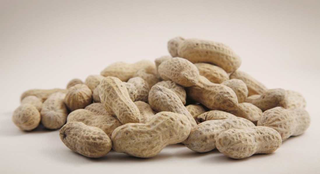 Peanut Allergy Drug Meets Primary Endpoint in Phase III Clinical Trial