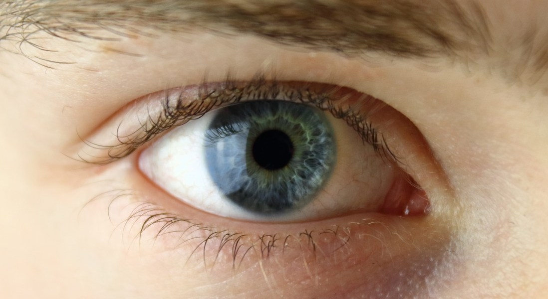 Cancer Immunotherapy and Eye Disease: What Oncologists and Ophthalmologists Should Know
