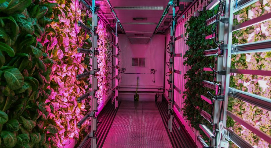 Grow Pod Solutions Provides Portable Automated Indoor Farms for Grocers