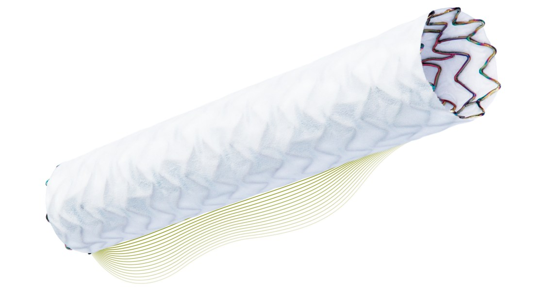 Biotronik's Coronary Stent Gets Approval for Rare Complication of Percutaneous Coronary Intervention