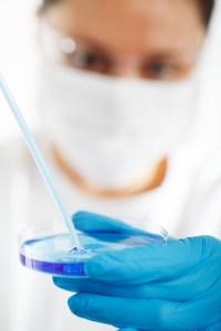 Scientist pipetting into a Petri dish