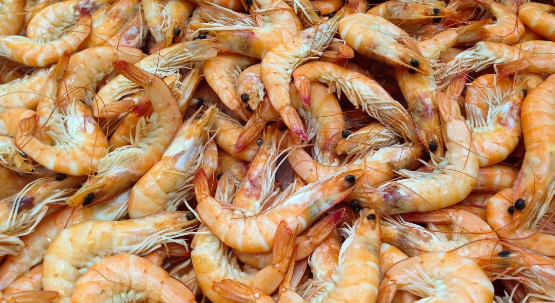 Tackling the Shrimp Problem with Technology