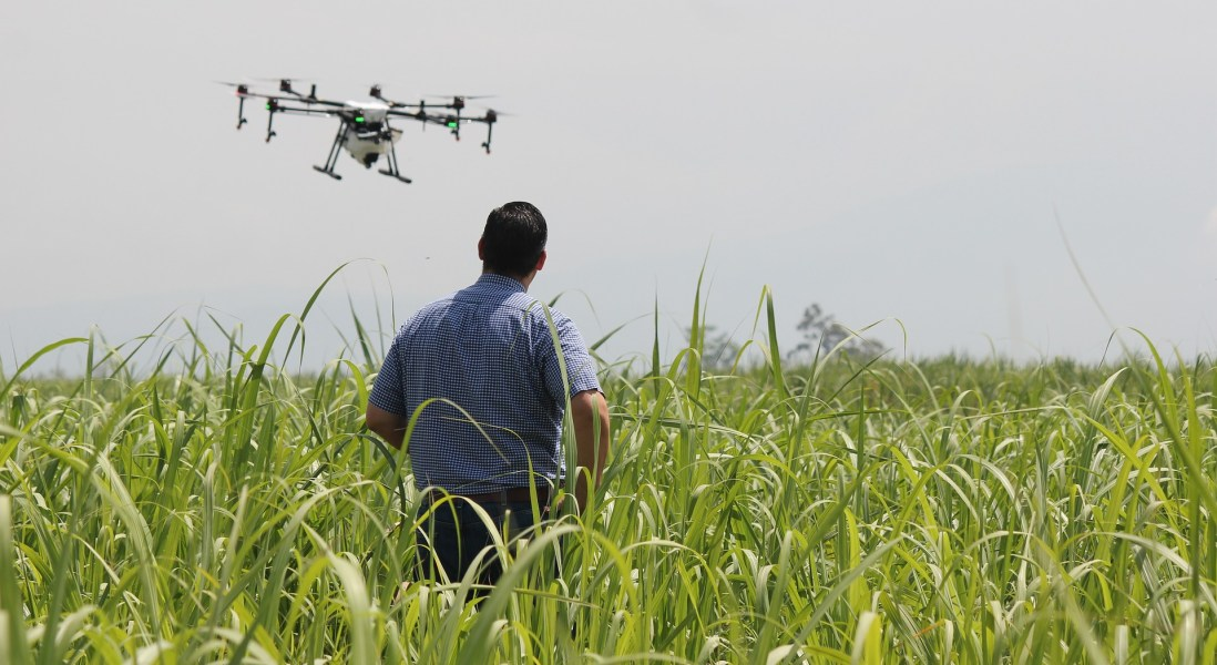 A New Industry of Hybrid Biologist-Engineers are Needed for a Future of Food Security