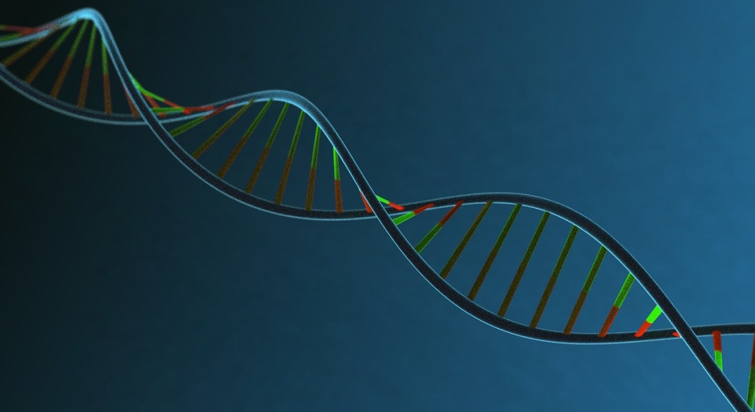 Drugs Backed by Genetic Evidence More Likely to be Approved, Says Study