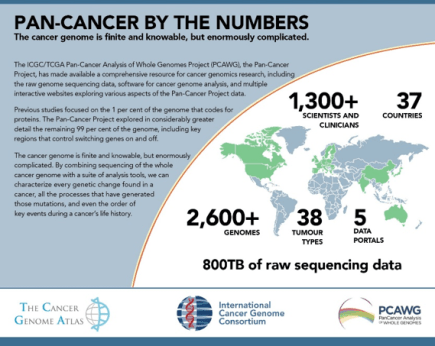 Pan-Cancer Project