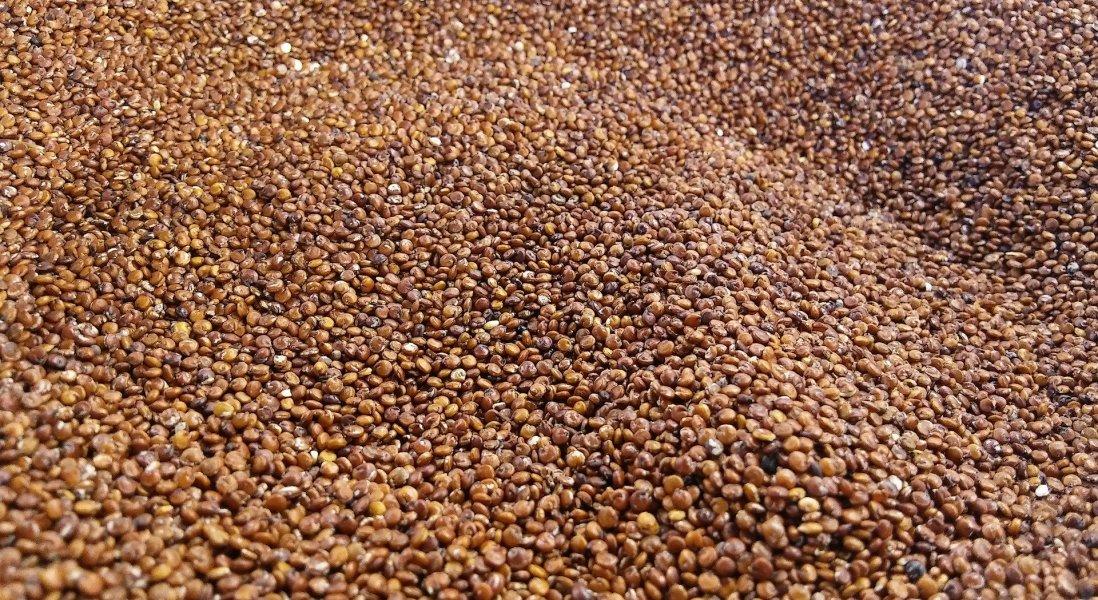 Ardent Mills Acquires Andean Naturals' Quinoa Operations