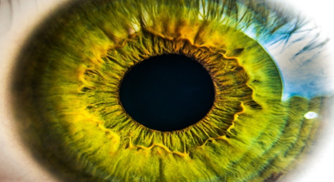New Artificial 3D Eye with Enhanced Features to Treat Visual Impairment