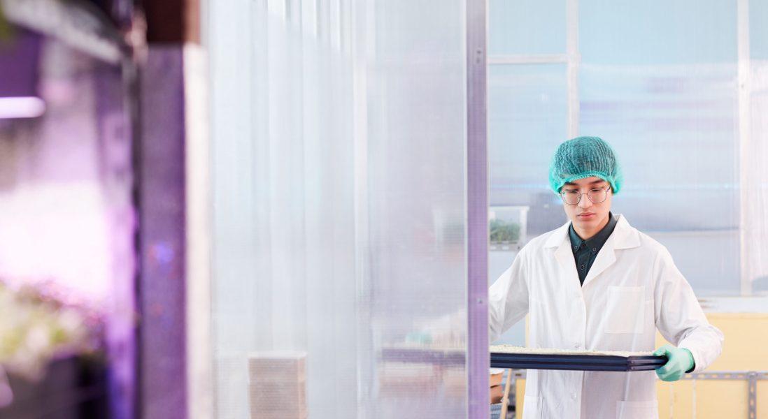 Strategies for Regulatory Starting Materials Designation in Drug Development and Manufacturing