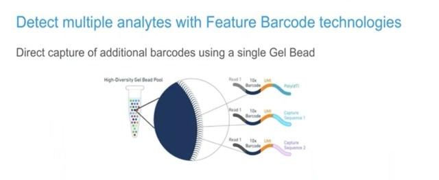 Feature barcoding