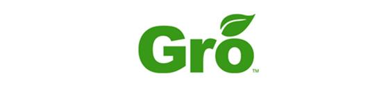 Gro Solutions – TAG FinTech Advance Award