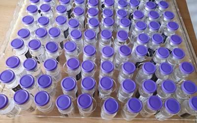 Comença la vacunació contra la COVID-19 al Departament de Salut Xàtiva-Ontinyent