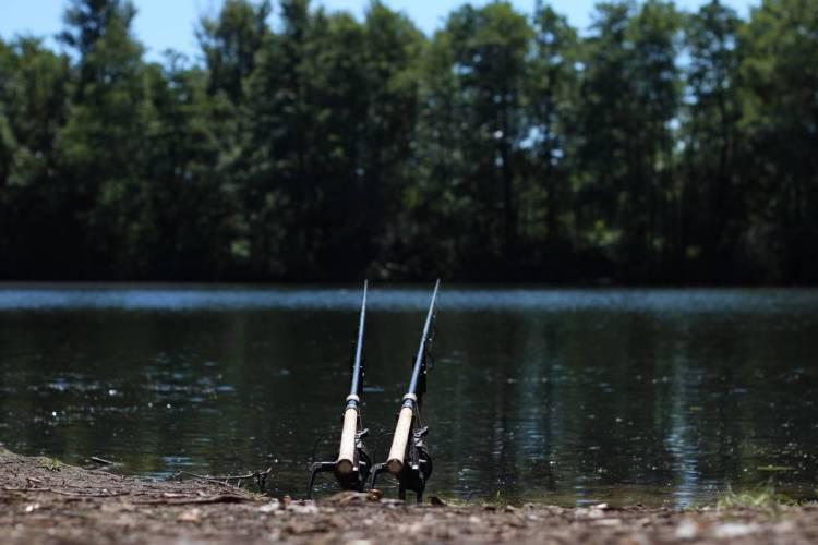 carp fishing on yateley