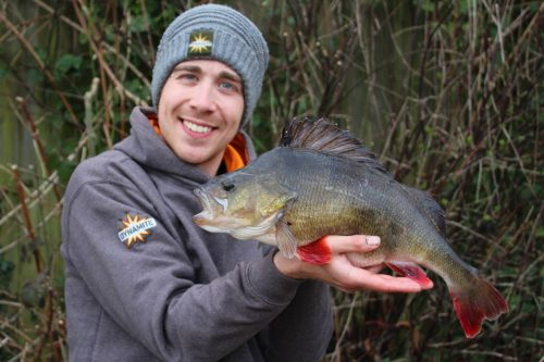 The Big Fish Hunt: Round Off the Season with a Back-End Bonanza
