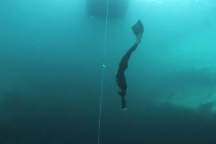 William Trubridge Freediving - thumb